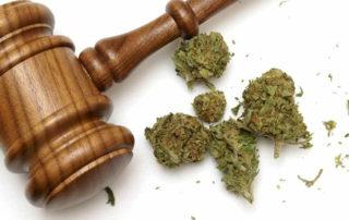 Acquittal of Drug Possession